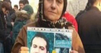 The mother of Soheil Arabi arrested