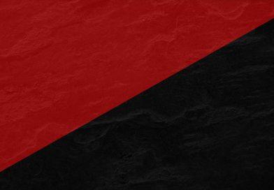 Программа анархизма для Беларуси от Игоря Олиневича