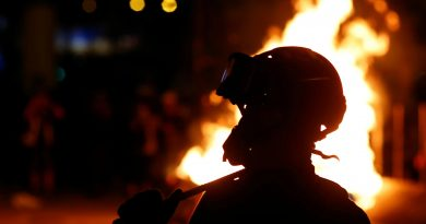 К вопросу о допустимости политического насилия